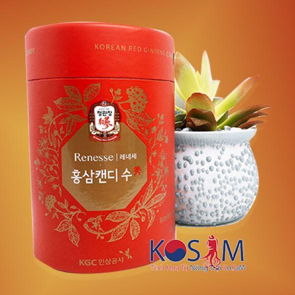 Red ginseng KRG 120gr